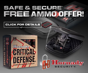 Safe & Secure Rebate