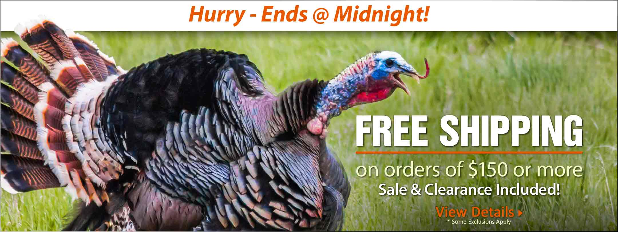 Hurry - Free Shipping Offer Ends @ Midnight!