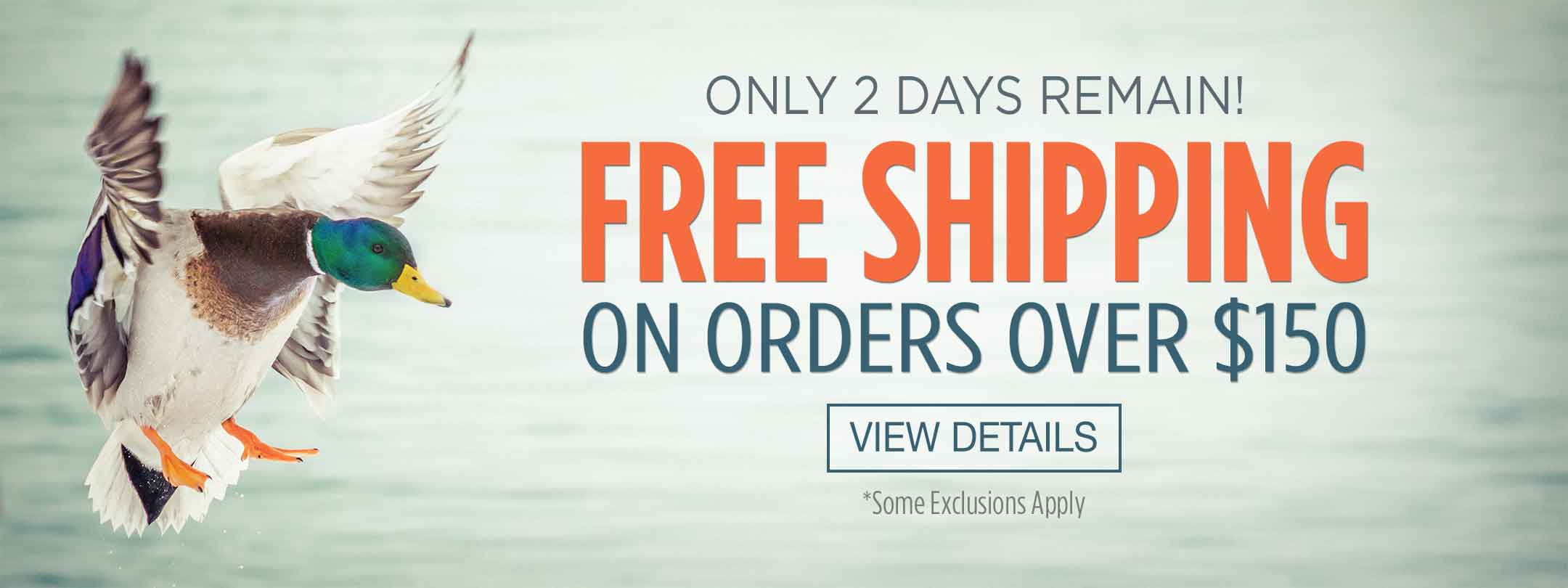 Only 2 Days Left! Free Shipping