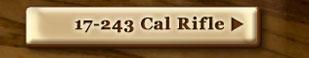 17-243 Cal Rifle
