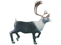 Product detail of Rinehart Caribou 3-D Foam Archery Target