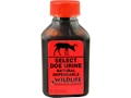 Product detail of Wildlife Research Center Select Doe Urine Deer Scent Liquid 1 oz