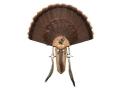 Product detail of H.S. Strut Three Beard Turkey Mounting Kit