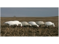 Product detail of GHG Pro-Grade Full Body Snow Goose Decoys Feeder Pack of 6