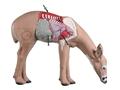 Thumbnail Image: Product detail of Rinehart Anatomy Deer 3-D Foam Archery Target