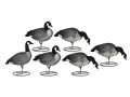 Product detail of Dakota Decoys X-Treme Full Body Lesser Canada Goose Decoys Pack of 6