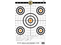 "Product detail of Do-All Precision Target 12"" x 18"" Paper Target Package of 10"