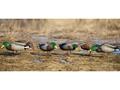 Product detail of GHG Pro-Grade Full Body Mallard Duck Decoys Harvester Pack of 12