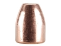 Product detail of Rainier LeadSafe Bullets 50 Caliber (500 Diameter) 275 Grain Plated H...
