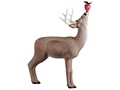 Product detail of Rinehart Deer With Apple 3-D Foam Archery Target