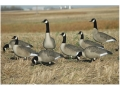 Product detail of GHG Hunter Series Full Body Canada Goose Decoys Active Pack of 6