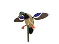 Product detail of MOJO Baby Drake Motion Duck Decoy Polymer