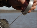 Thumbnail Image: Product detail of GHG Braided Decoy Cord