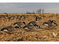 Product detail of GHG Pro-Grade Full Body Honkers Goose Decoys Harvester Pack of 6