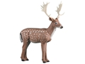 Product detail of Rinehart Fallow Deer 3-D Foam Archery Target