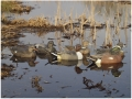 Product detail of GHG Life-Size Weighted Keel Duck Decoys Puddler Pack of 6