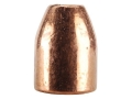 Product detail of Rainier LeadSafe Bullets 50 Caliber (500 Diameter) 300 Grain Plated Hollow Point