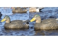 Product detail of GHG Pro-Grade Active Pack Hybrid Black Duck Decoy Pack of 2