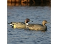 Product detail of GHG Over-Size Duck Decoys Pack of 6