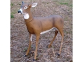 Thumbnail Image: Product detail of Flambeau Masters Series Boss Babe Doe Deer Decoy ...