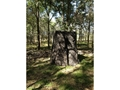 "Product detail of Nature Blinds TreeBlind Ground Blind 77"" x 77"" x 88"" Polyurethane Tree Bark Camo"