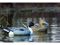 Product detail of Flambeau Storm Front Weighted Keel Pintail Duck Decoys Pack of 6
