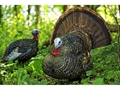 Product detail of Avian-X LCD Strutter Turkey Decoy