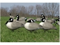 Product detail of Flambeau Storm Front Full Body Relax Pack Canada Goose Decoys Pack of 4