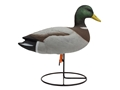 Tanglefree Pro Series Duck Decoy Full Body Mallard Upright Duck Decoy Pack of 6