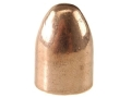 Rainier LeadSafe Bullets 45 Caliber (451 Diameter) 230 Grain Plated Round Nose