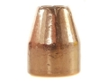 Rainier LeadSafe Bullets 45 Caliber (451 Diameter) 200 Grain Plated Hollow Point