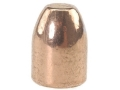 Rainier LeadSafe Bullets 40 S&W, 10mm Auto (400 Diameter) 165 Grain Plated Round Nose Flat Point