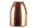 Rainier LeadSafe Bullets 50 Caliber (500 Diameter) 300 Grain Plated Hollow Point