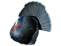 Feather Flex Tommy Jake Full Strut Turkey Decoy Foam