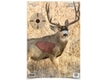 "Birchwood Casey PREGAME 16-1/2"" x 24"" Mule Deer Target Package of 3"
