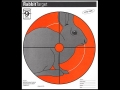 "Hoppe's Rabbit Target 10-1/2"" x 12"" Package of 20"