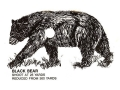 "Lyman Target Clean Kill Black Bear, Brown Bear, Coyote, Sheep, Goat 4"" x 6"" Package of 18"