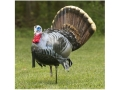 Cherokee Sports Billy Bad Act II Strutting Gobbler Turkey Decoy