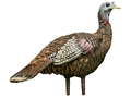 Avian-X LCD Lookout Hen Turkey Decoy