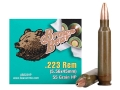 Brown Bear Ammunition 223 Remington 55 Grain  Hollow Point (Bi-Metal) Box of 20