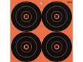 "Birchwood Casey Big Burst BB6 6"" Bullseye Target Pack of 12"
