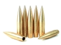 Lapua Bullex-N Bullets 50 BMG (510 Diameter) 750 Grain Full Metal Jacket Boat Tail Box of 20