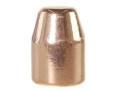 Product detail of Rainier LeadSafe Bullets 40 S&W, 10mm Auto (400 Diameter) 165 Grain Plated Flat Nose