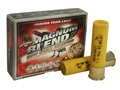 "Hevi-Shot Hevi-13 Magnum Blend Turkey Ammunition 20 Gauge 3""  1-1/4 oz #5, #6 and #7 Hevi-Shot High Velocity Non-Toxic Box of 5"