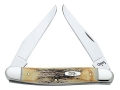 Case Muskrat Folding Pocket Knife 2-Blade Stainless Steel Blade Stag Handle