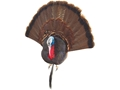 Cherokee Sports Taxidermy Bust Turkey Mounting Kit