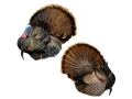Montana Decoy Mr. T Strutter Turkey Decoy Cotton, Polyester and Steel