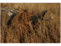 Product detail of Avery Killer Ghillie Suit Top