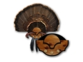 Product detail of Mountain Mike&#39;s Beard Master Turkey Fan Mounting Plaque Polymer Wood Grain