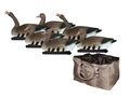 Hard Core Touchdown Specklebelly Goose Floater Decoy Pack of 6 with Slotted Decoy Bag